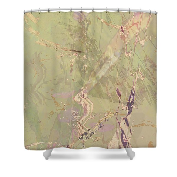 Wabi Sabi Ikebana Revisited Shabby 1 Shower Curtain