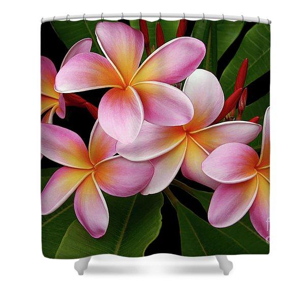 Wailua Sweet Love Texture Shower Curtain