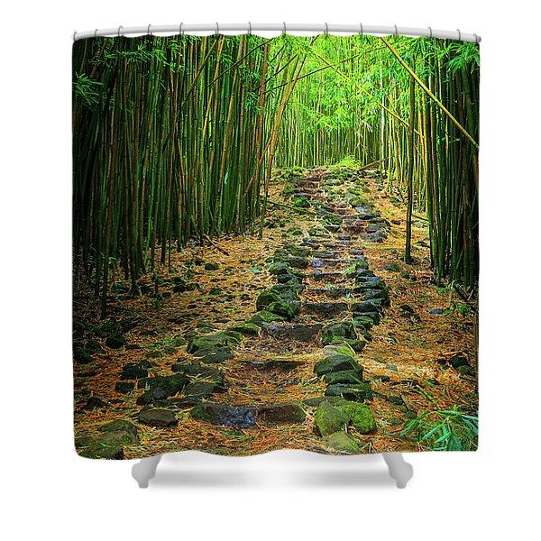 Waimoku Bamboo Forest #2 Shower Curtain