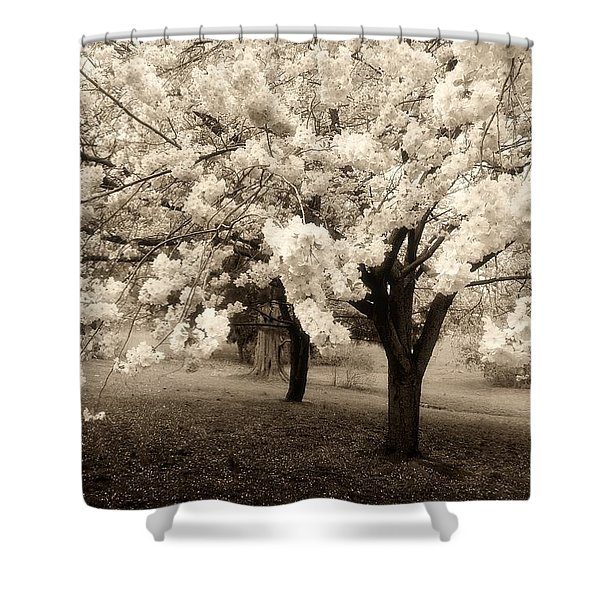 Waiting For Sunday - Holmdel Park Shower Curtain