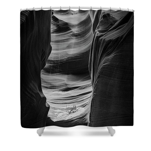 Waiting For Sunlight Shower Curtain