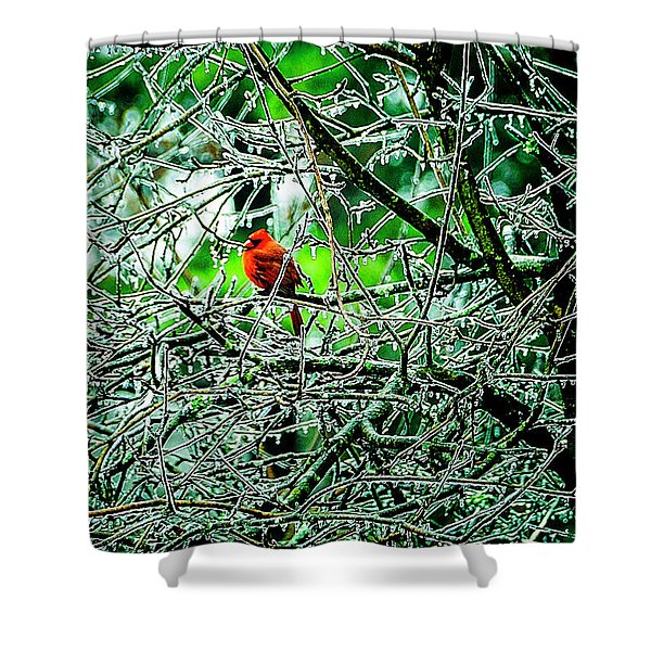 Shower Curtain featuring the photograph Waiting For The Thaw by Gerlinde Keating - Galleria GK Keating Associates Inc