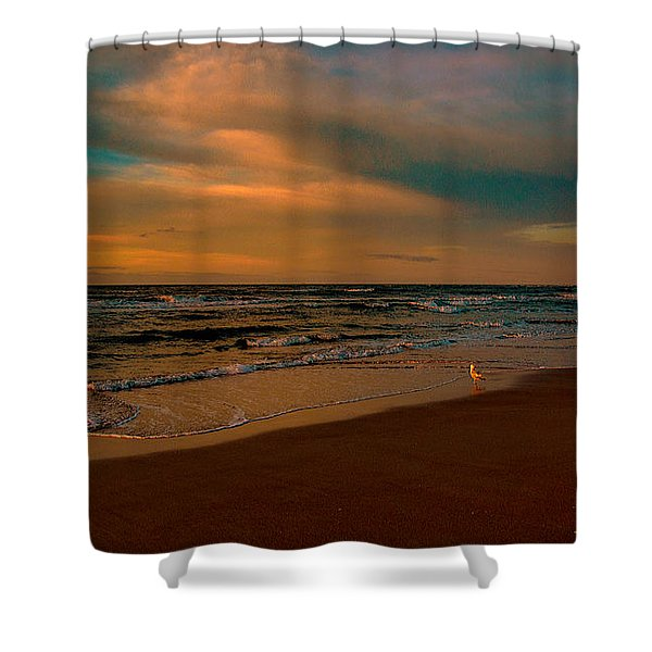 Waiting On The Dawn Shower Curtain