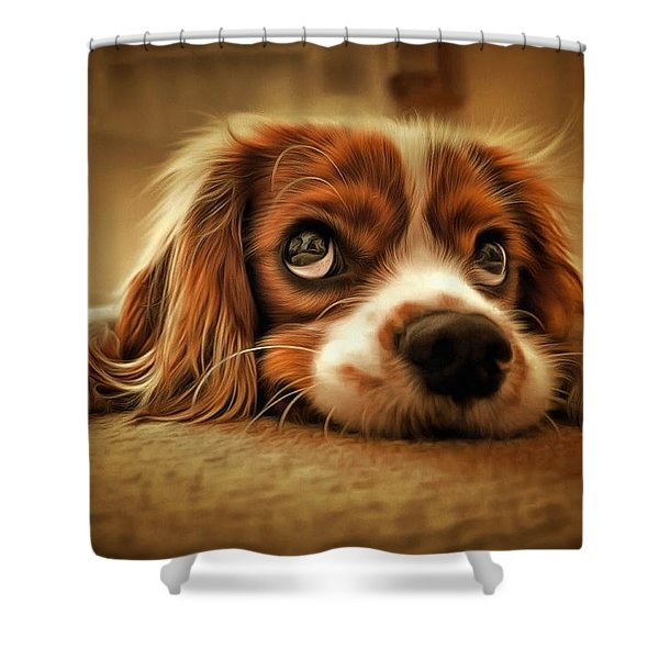 Waiting Pup Shower Curtain