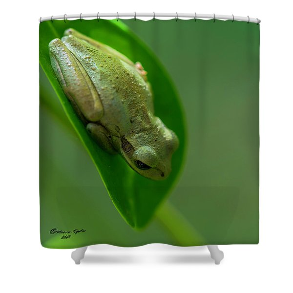 Wake Up Time Shower Curtain
