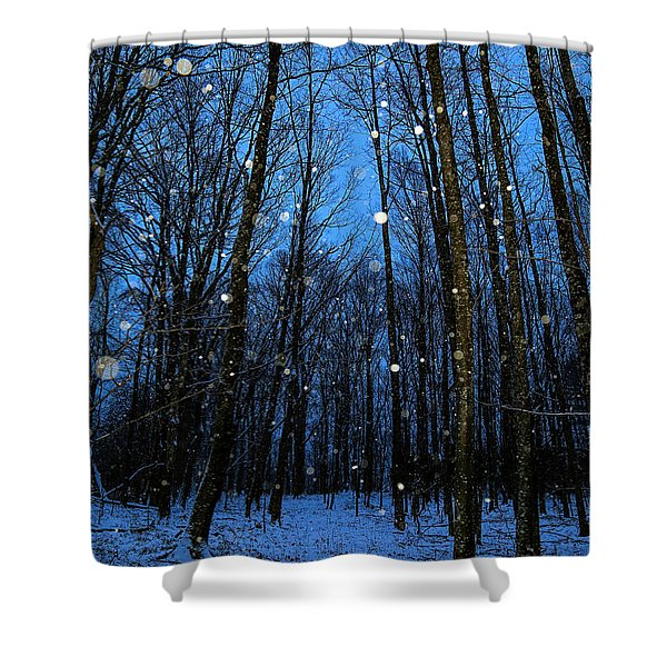 Walk In The Snowy Woods Shower Curtain
