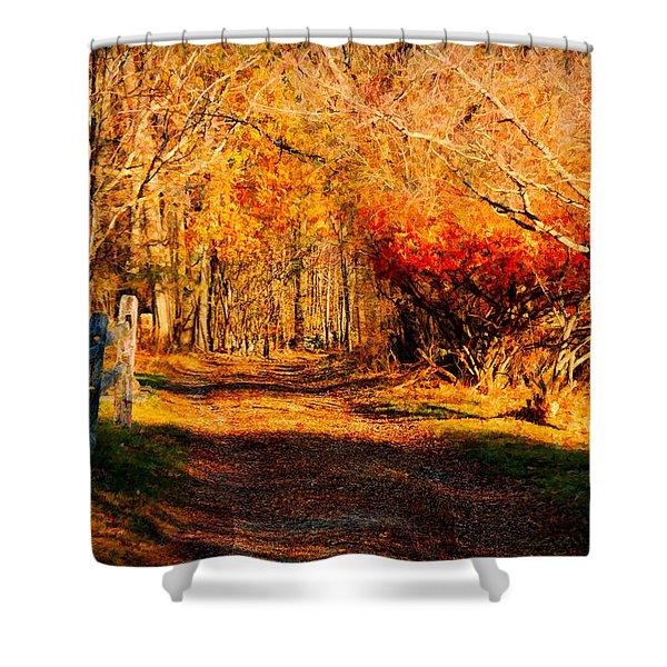 Walking Down The Autumn Path Shower Curtain