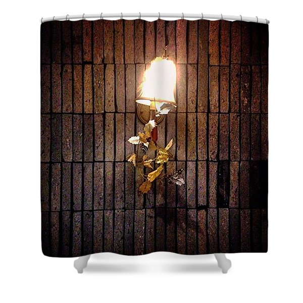 Wall Hangings Illumination And Decoration Of The Vine Shower Curtain