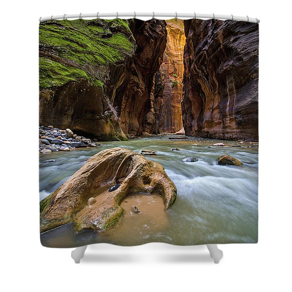 Wall Street Of The Narrows Shower Curtain