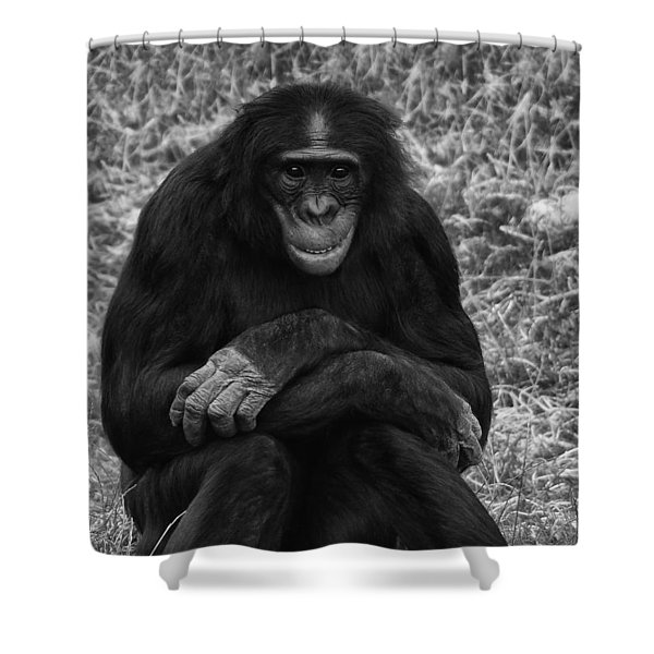 Shower Curtain featuring the photograph Wanna Be Like You by Nick Bywater
