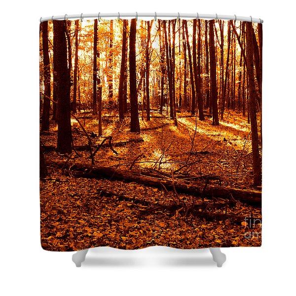 Warm Woods Shower Curtain