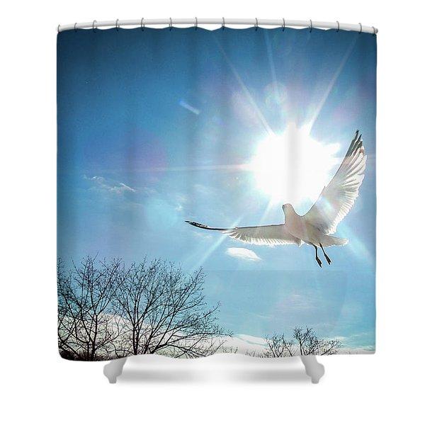 Warmed Wings Shower Curtain