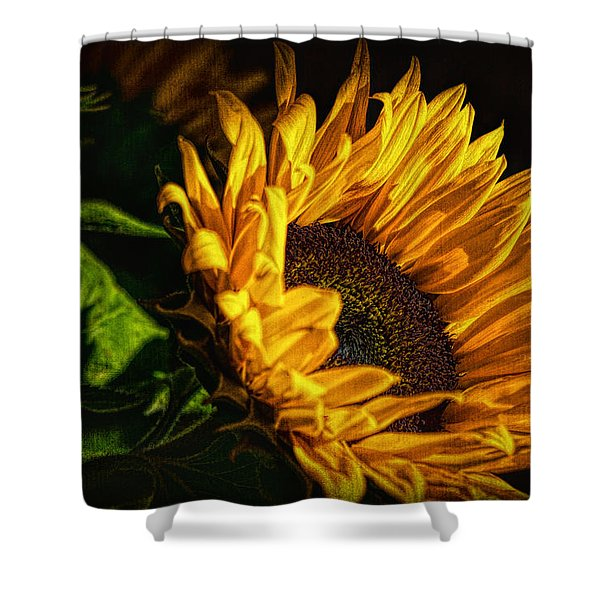 Shower Curtain featuring the photograph Warmth Of The Sunflower by Michael Hope