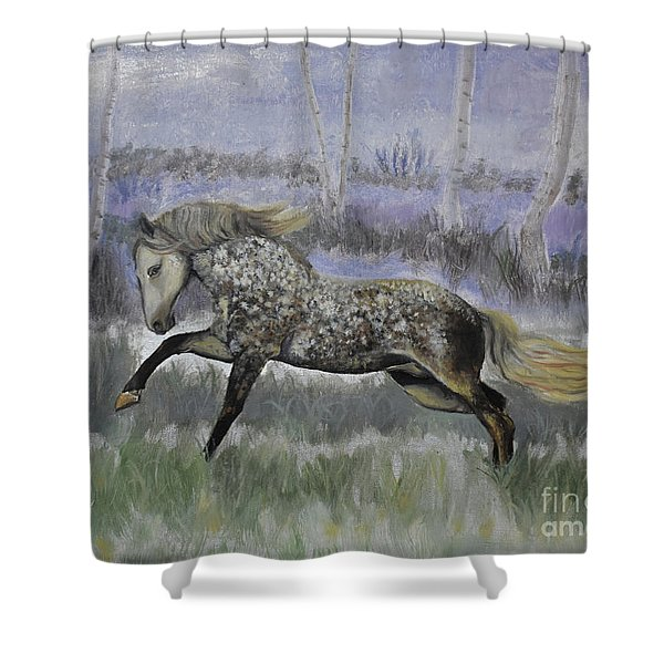 Warrior Of Magical Realms Shower Curtain