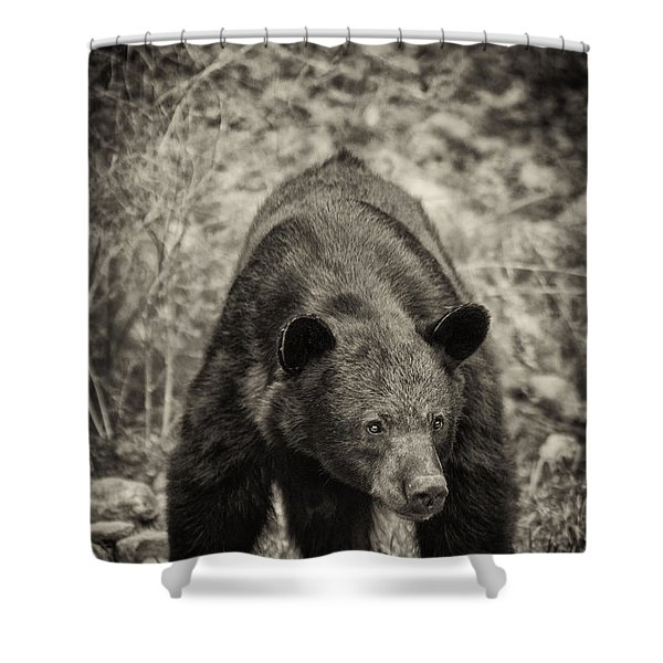 Watch Out-sepia Shower Curtain