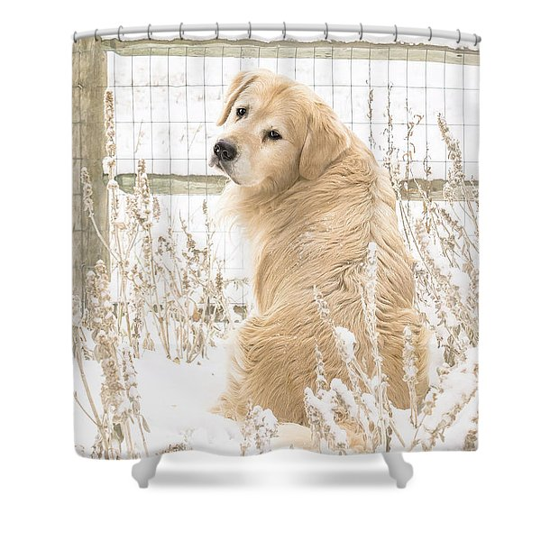 Watching It Snow Shower Curtain