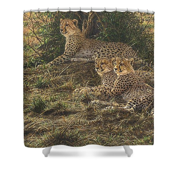 Shower Curtain featuring the painting Watching Mam by Alan M Hunt