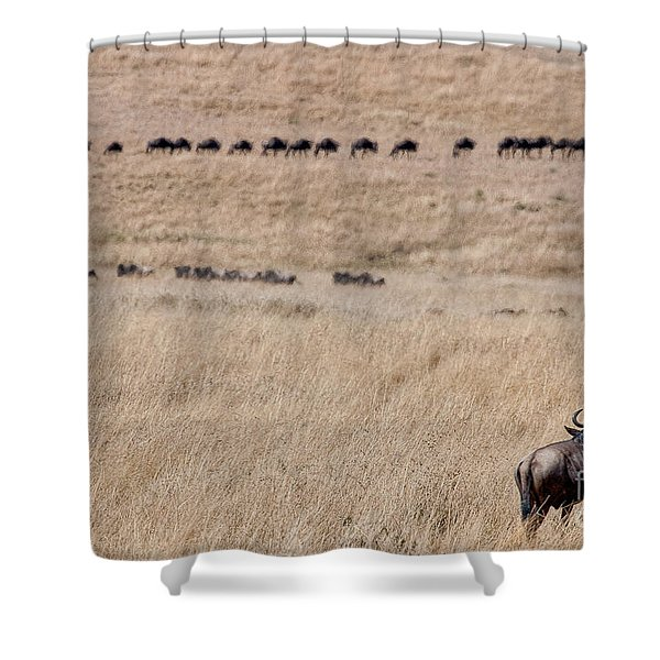 Watching The Herd Shower Curtain