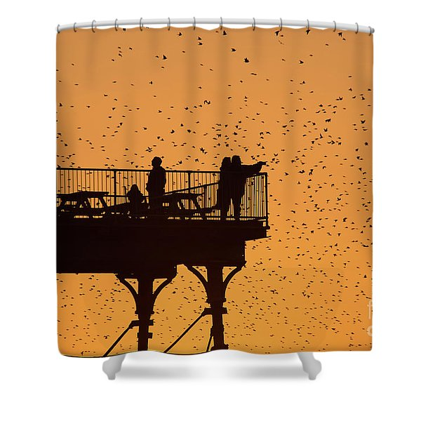 Watching The Sunset And Starlings In Aberystwyth Wales Shower Curtain