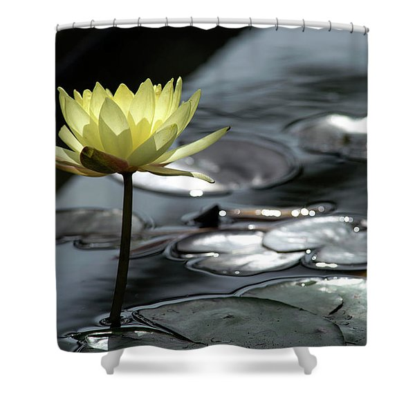 Water Lily And Silver Leaves Shower Curtain