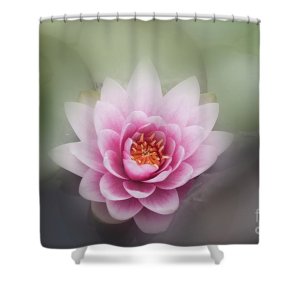 Water Lotus Flower Shower Curtain