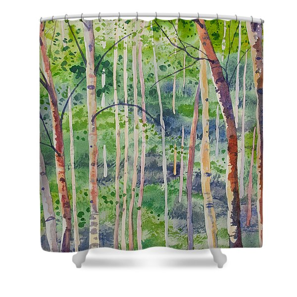 Watercolor - Magical Aspen Forest After A Spring Rain Shower Curtain