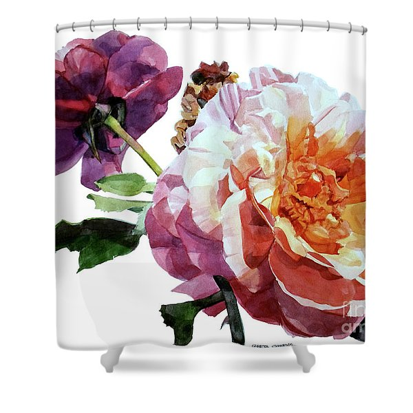 Watercolor Of Two Roses In Pink And Violet On One Stem That  I Dedicate To Jacques Brel Shower Curtain