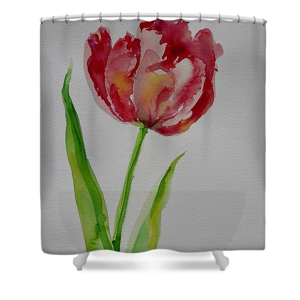 Watercolor Series No.  228 Shower Curtain