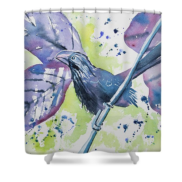 Watercolor - Smooth-billed Ani Shower Curtain