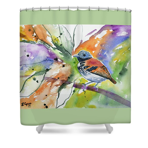 Watercolor - Spotted Antbird Shower Curtain