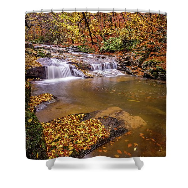 Waterfall-6 Shower Curtain