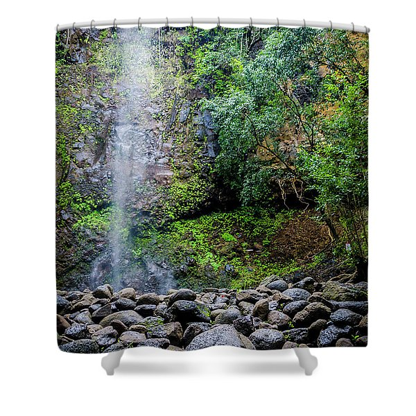 Waterfall And Flowers Shower Curtain
