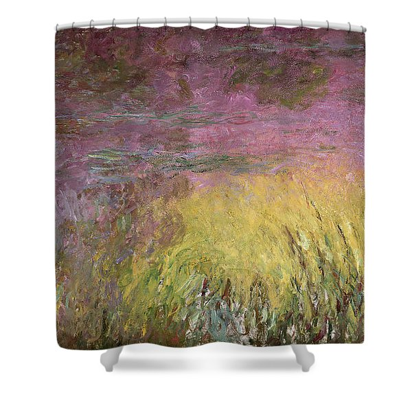 Waterlilies At Sunset Shower Curtain