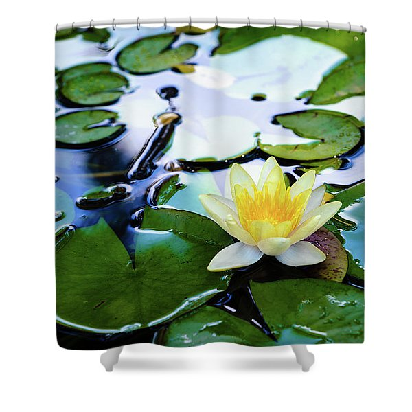 Waterlilly On Blue Pond Shower Curtain