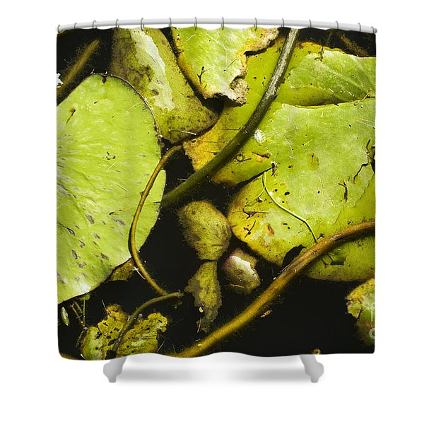 Waterlilly Plants Shower Curtain