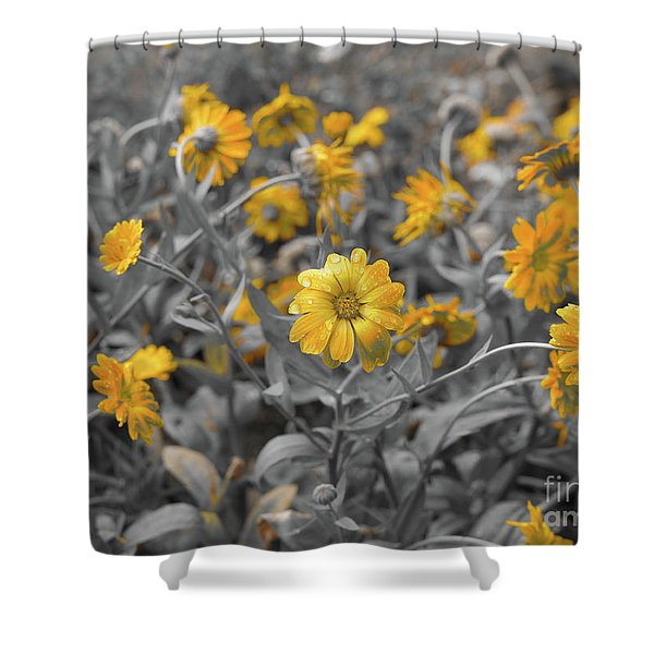 We Fade To Grey Shower Curtain