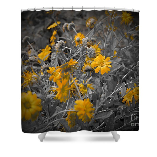 We Fade To Grey Three Shower Curtain