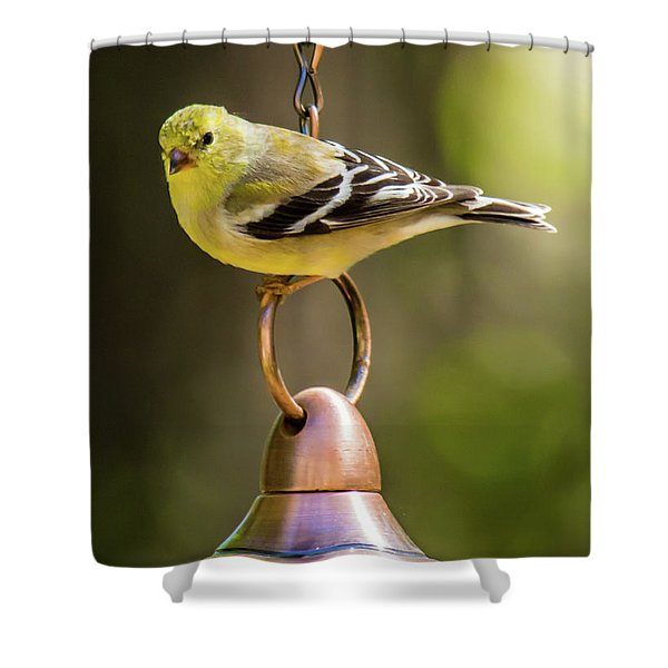 Shower Curtain featuring the photograph We Need More Food Mr. Jackson by Robert L Jackson