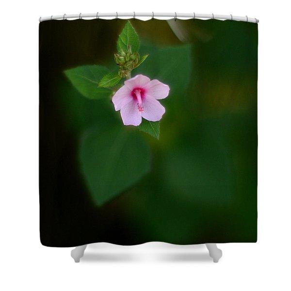 Weed Flower 907 Shower Curtain