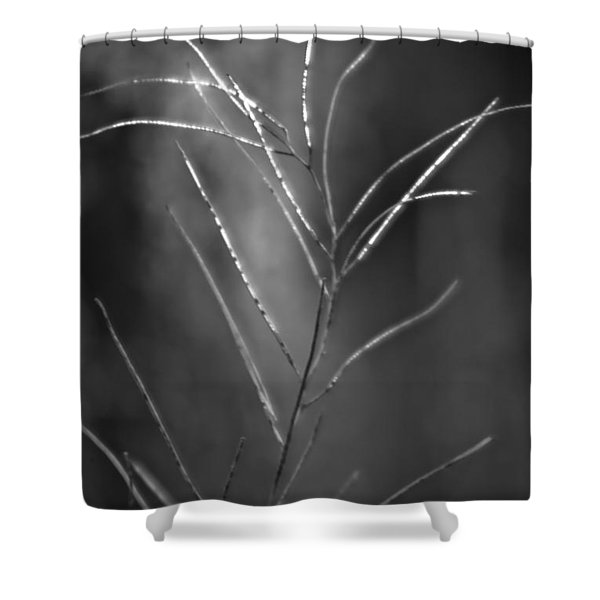 Shower Curtain featuring the photograph Weeds 1 by Catherine Sobredo