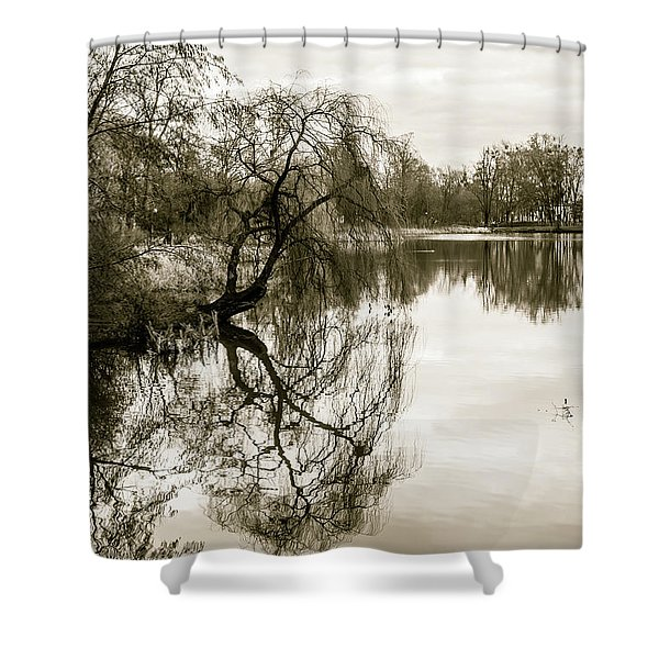 Weeping Willow Tree In The Winter Shower Curtain
