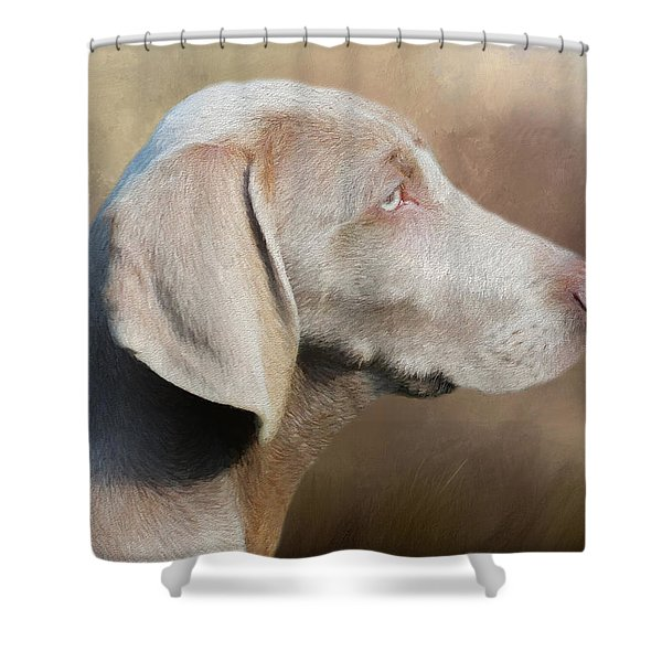 Weimaraner Adult - Painting Shower Curtain