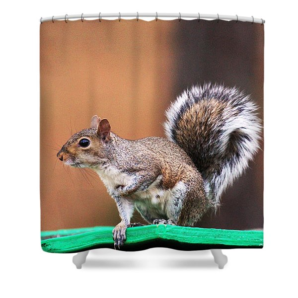 Well Fed Shower Curtain