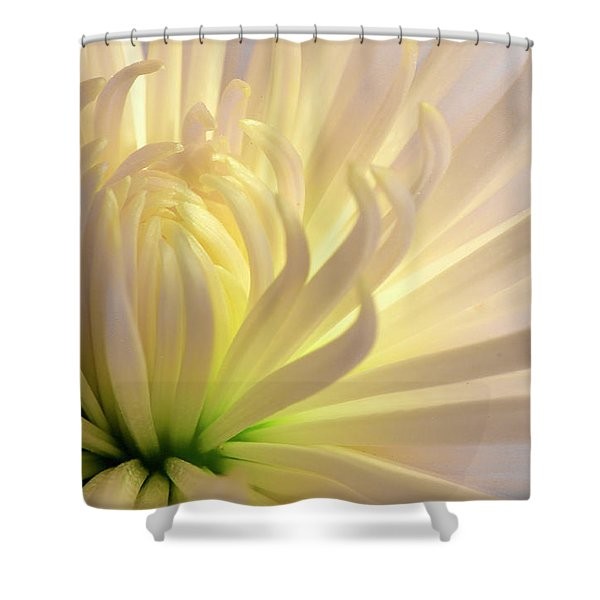 Well Lit Mum Shower Curtain
