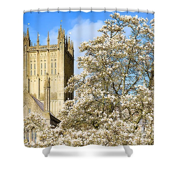 Wells Cathedral And Spring Blossom Shower Curtain
