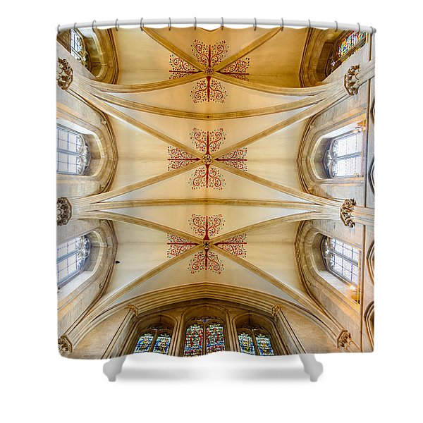 Wells Cathedral Ceiling Shower Curtain