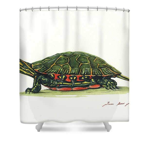Western Painted Tortoise Shower Curtain
