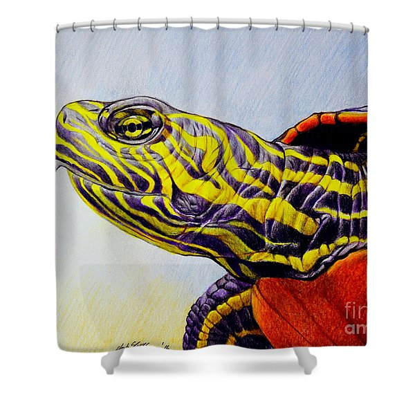 Western Painted Turtle Shower Curtain