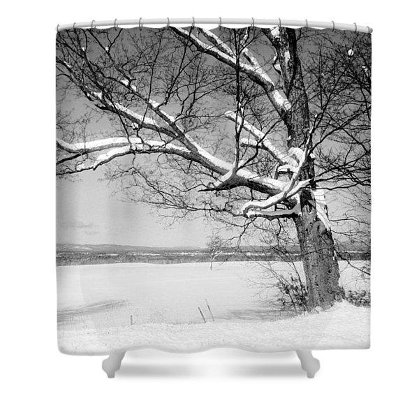 Westward Shower Curtain