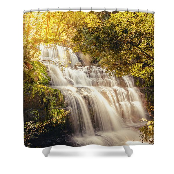 Wet Dreams Shower Curtain